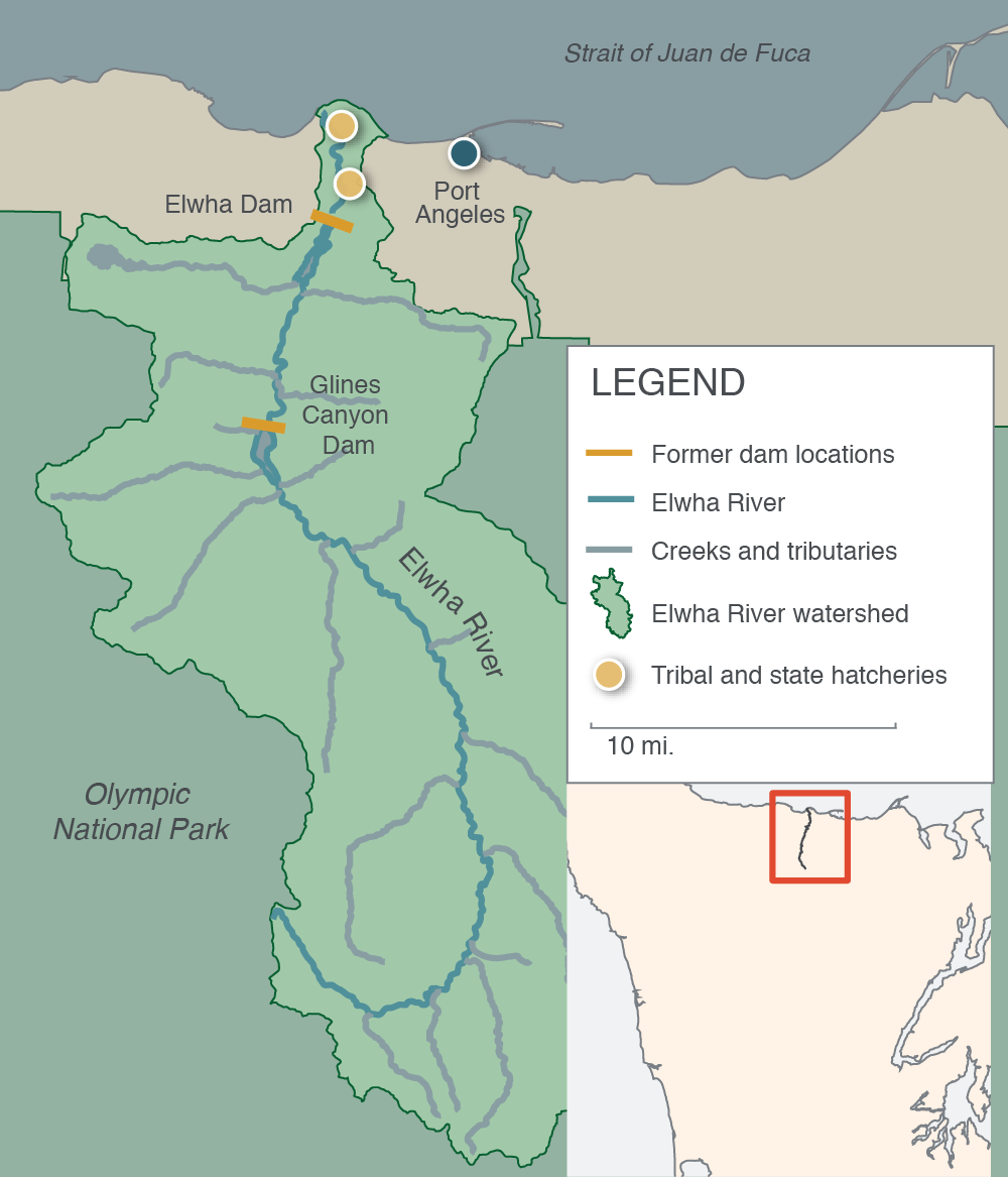 Map of Elwha watershed and former dam locations.